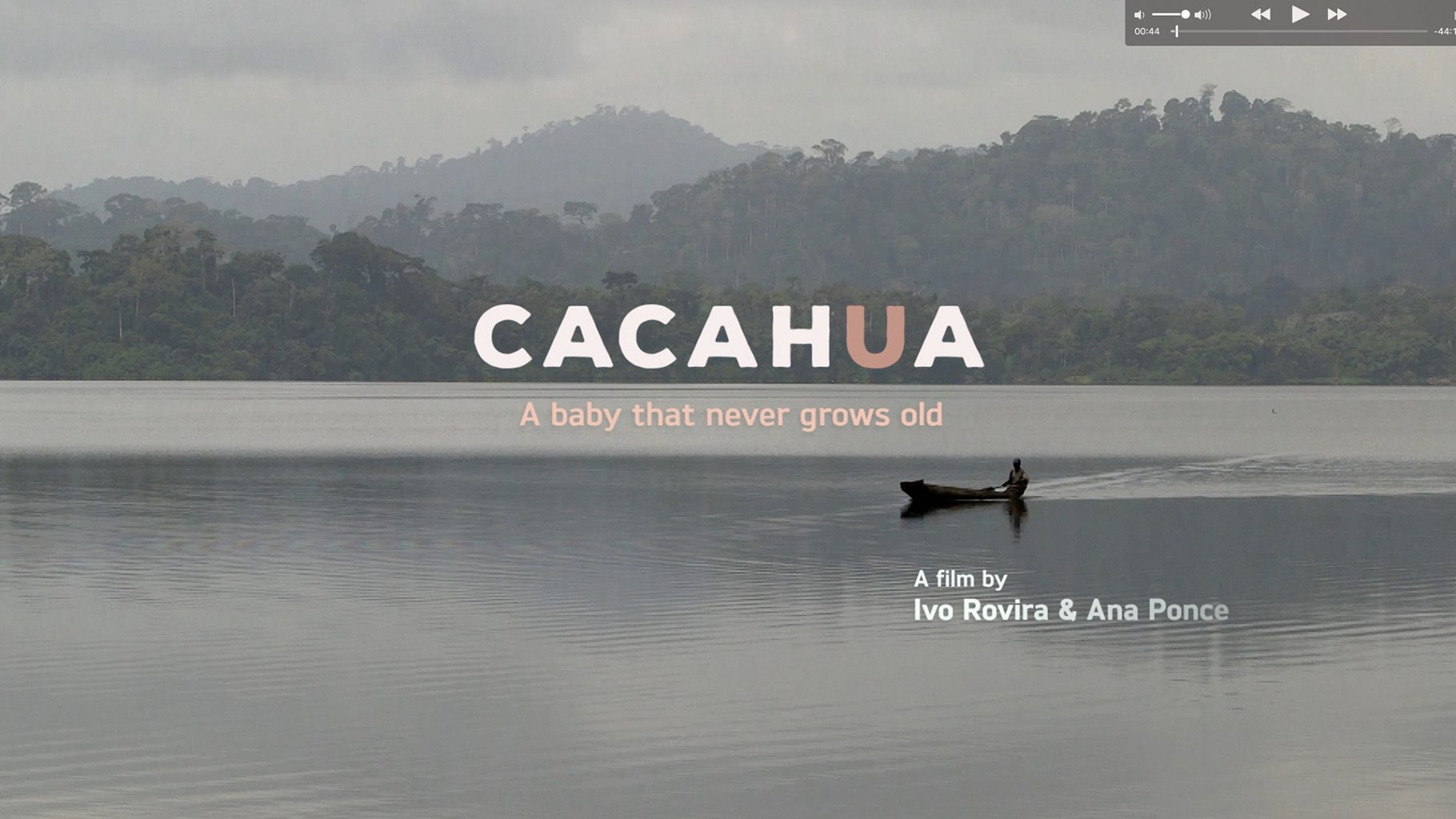 Cacahua. A baby that never grows old.