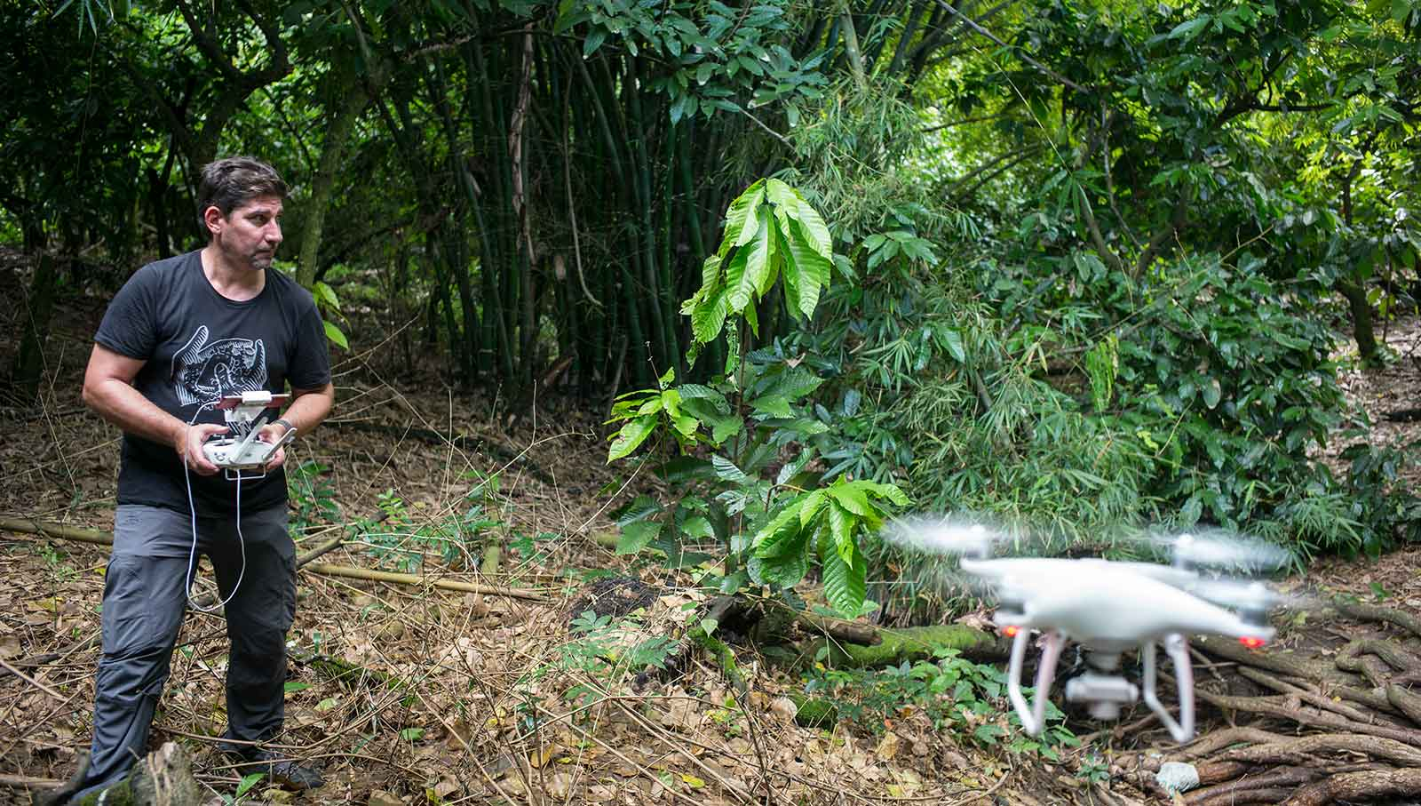 Ivo Rovira. Volando el dron en el interior de la plantación